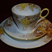 REDUCED Shelley China Trio - Yellow Blossom - Oxford Shape.