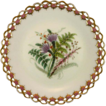 ROYAL WORCESTER c1869 Australian wild flowers antique plate #2
