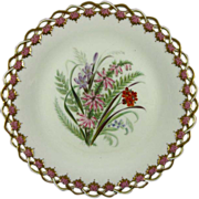 ROYAL WORCESTER c1869 Australian wild flowers antique plate #4