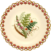ROYAL WORCESTER c1869 Australian wild flowers antique plate #7
