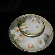 Vintage R S Germany Plate
