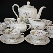 Winterling Porcelain Tea Set, Bavaria, Germany,17 pieces