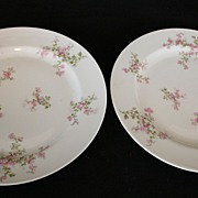 China, Haviland Plates, Porcelain, collectible dishes