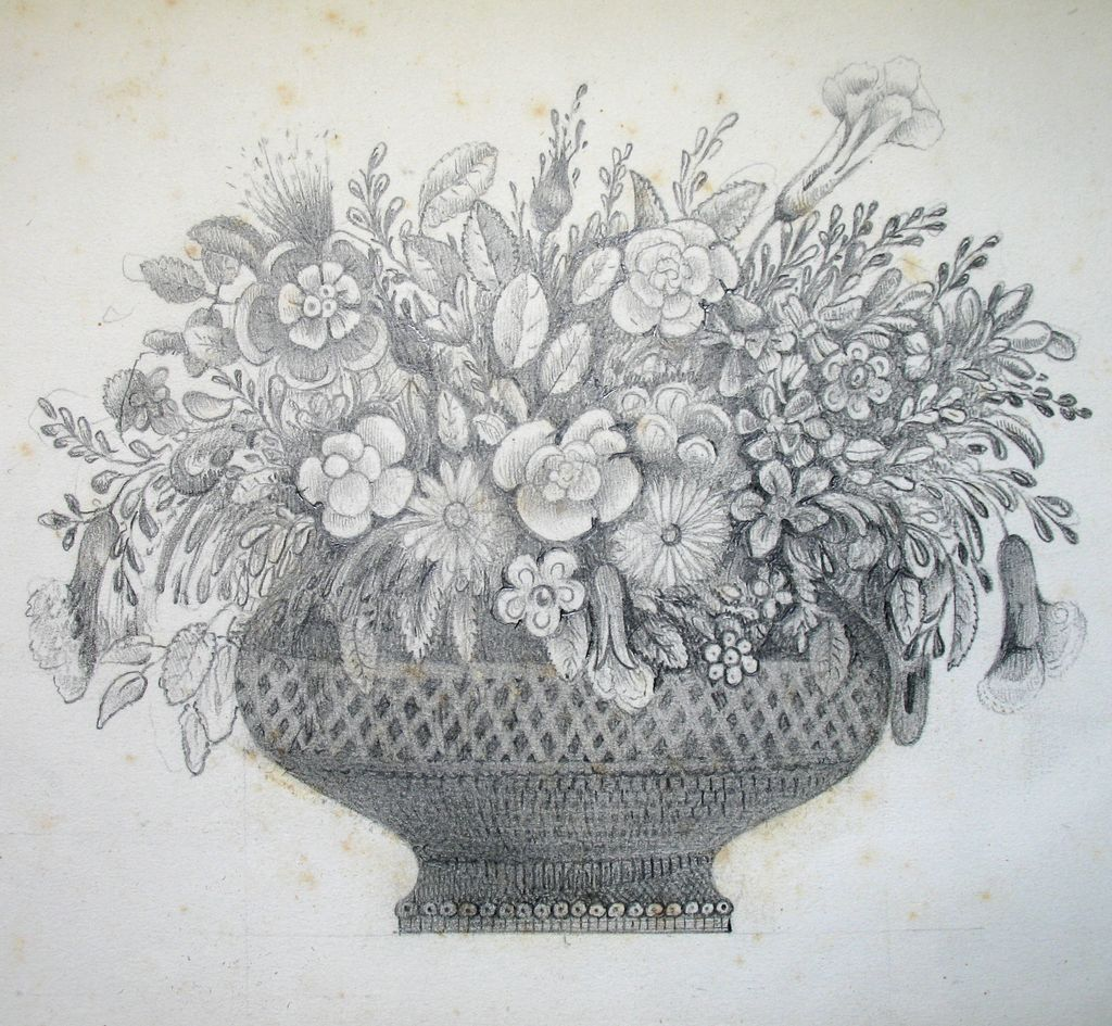 Victorian Flower Drawings Victorian Drawing FloralVictorian Flower Drawings