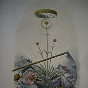 Grandville Victorian Engraving 'Immortelle' from Les Fleurs Animees. 1867.