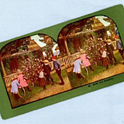 Cute Stereoview Card  Five Children Near a Porch and Rosebush