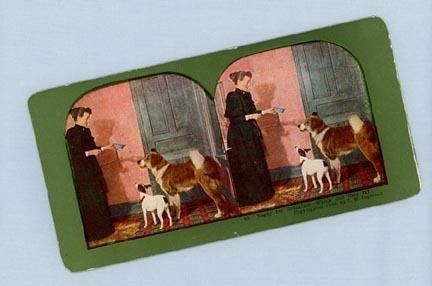 Stereoview Card &ndash; Woman with Very Small Dish for Two Dogs