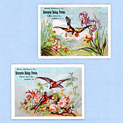 Two Trade Cards � Birds and Flowers � Enterprise Baking Powder