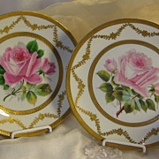 Incredible Museum Quality Limoges France Service Dinner Plate Set Exceptional Hand Painted Ros