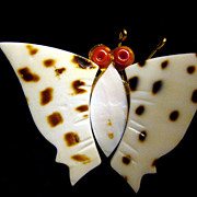 Butterfly Pin Made from Shell