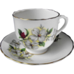 Taylor and Kent Elizabethan Cup and Saucer with Dogwoods