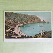 Post Card: Catalina Island, Ca.  Circa - early 20th