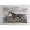 Lithograph Print of John Scott engraving of horse &quot; Bennington&quot; from 1796 : circa 1872