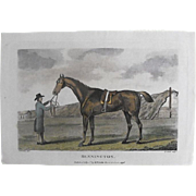 "Lithograph Print of John Scott engraving of horse "" Bennington"" from 1796 : circa 18"