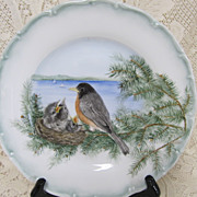 Decorative  Cabinet  Plate - Robins - Haaz & Cajzek