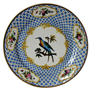 French Ornithological Plate,  Antique c1825, Handpainted Bird, Gilding
