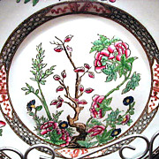 Beautiful Coalport Indian Tree or Tree of Life Multicolor 8 �� Dinner Plate