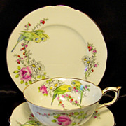 Paragon ~ Princess Margaret Rose ~ Budgies in Blossoms ~ 3 Piece ~ Trio