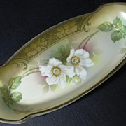 R. S. Germany Porcelain Celery Bowl