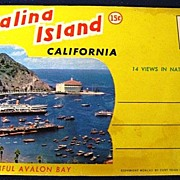 Catalina Island California Folding Picture Postcard