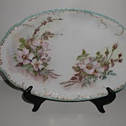 REDUCED Absolutely Exquisite Haviland Limoges France  Oval Platter  Hand Painted Wild Pink Ros