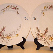 "Charles Field Haviland Gerard Dufraisseix & Morel Limoges Meadow Visitor 9 1/2"" Dinner Pl"