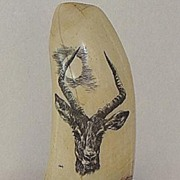 REDUCED Artist Signed Jones Whales Tooth Scrimshaw Antelope OLD