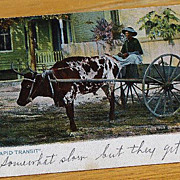 Vintage 1905 Black Americana  Postcard Rapid Transit