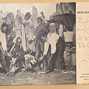1899 Black Americana Undivided Back Dead Game Sports Cock Fighting Real Life Postcard