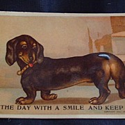 Vintage Wag Tail Dachshund Dog Post Card