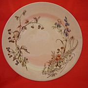 1800's Decorative Transferware Plate by English John Edwards
