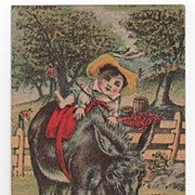 The Alden Fruit Vinegar Trade Card Reverse Fur Store