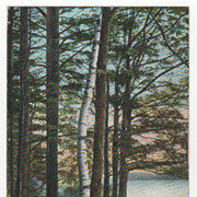 Brookside Park Athol/Orange MA Massachusetts Vintage Postcard