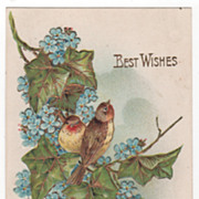 Greetings Postcard &quot;Best Wishes&quot; Birds Blue Flowers