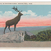 Elks' Memorial on Whitcomb Summit Mohawk Trail MA Massachusetts Vintage Postcard