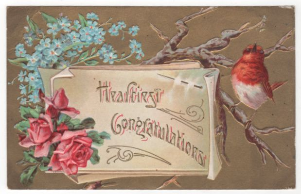Greetings Vintage Postcard Heartiest Congratulations Robin Pink Roses
