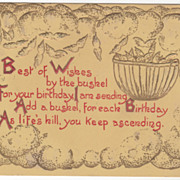 Greetings Vintage Postcard Birthday Best of Wishes Bushel of Wishes