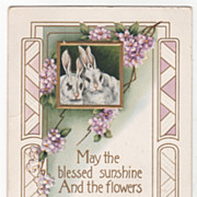 Easter Vintage Postcard May the Blessed Sunshine Bunnies Small Purple Flowers