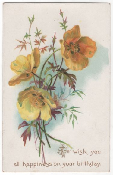 Greetings Vintage Postcard Birthday Beautiful Yellow Flowers Tuck