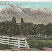 From the Railroad in January CA California Vintage Postcard