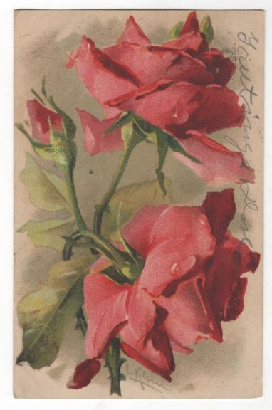 Artist Signed Unreadable Name Red Roses Vintage Postcard