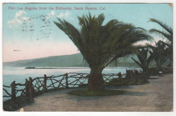 Port los Angeles from the Pallisades Santa Monica CA California Vintage Postcard
