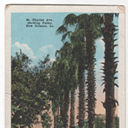 St Charles Avenue Showing Palms New Orleans LA Louisiana Vintage Postcard