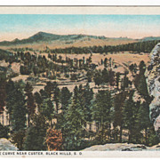 Horseshoe Curve near Custer SD South Dakota Black Hills Vintage Postcard