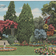 A Beautiful Garden Augusta GA Georgia Vintage Postcard
