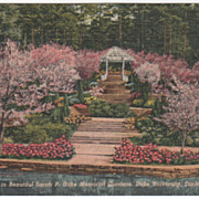 Sarah Duke Gardens Duke University Durham NC North Carolina Vintage Postcard