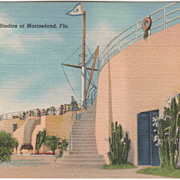 Marine Studios at Marineland FL Florida from South Vintage Postcard