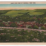 Bird's Eye View of Hornell New York NY Postcard