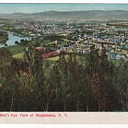 Bird's Eye View of Binghamton New York Postcard