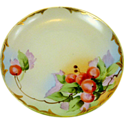 Hand Painted Cherries  1960�s Small Plate